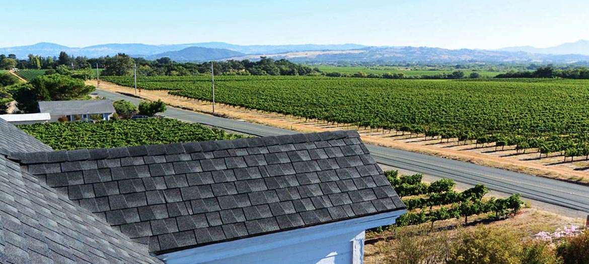 Roof top view of GAF shingle roof installed by Wedge Roofing overlooking Healdsburg vineyard