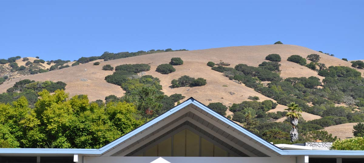 Marin County Historical Roof Restoration