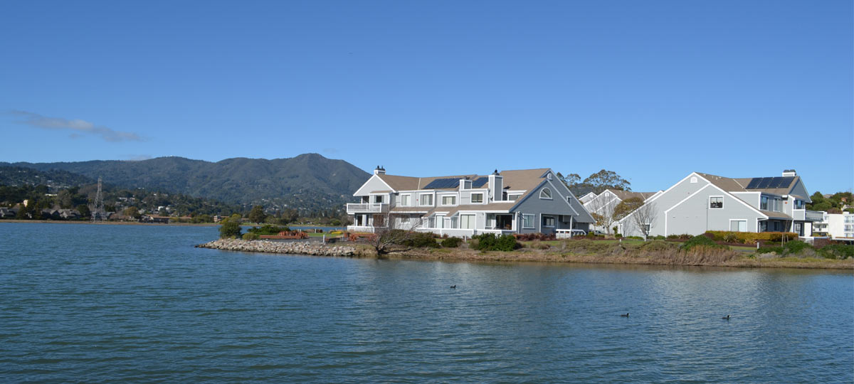 Residential Roof in Marin County, CA